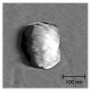 calcium phosphate sphere